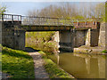 SD5907 : Shedfield Bridge, Leeds and Liverpool Canal by David Dixon