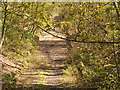 SD5907 : Haigh Country Park, Course of the Whelley Loop Line by David Dixon