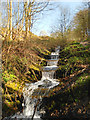 SD5907 : Waterfall on Yellow Brook, Haigh Country Park by David Dixon