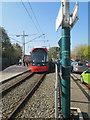 SK5445 : Hucknall tram at Bulwell by John Sutton