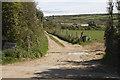 SW4325 : Lane to Trewoofe Wartha by Elizabeth Scott