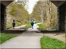 SJ9594 : Under Dowson Road Bridge by Gerald England