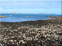 SV8808 : Porth Killier, St Agnes by David Purchase