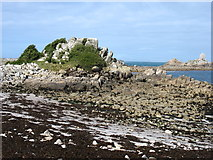 SV8708 : Burnt Island and the navigation marker by David Purchase