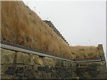 NT6334 : Turf roof of Smailholm Tower by M J Richardson