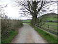 ST7899 : The Cotswold Way towards Cam Long Down by Ian S