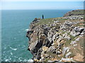 SR9593 : Overhanging cliff on the South Pembs coast by Jeremy Bolwell