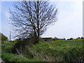 TM2771 : Pillbox on Wilby Lane by Adrian Cable