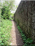 SX9364 : Path towards Asheldon Copse by Philip Jeffrey