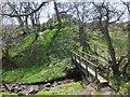 SJ2533 : Offa's Dyke Path footbridge by John Haynes