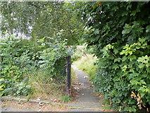 SK3487 : Albion Street Garden, Crookesmoor, Sheffield - 2 by Terry Robinson