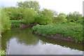 SK5033 : The River Erewash meanders by David Lally
