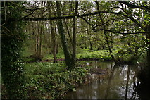 TF4077 : Wetland at Belleau Bridge by Chris