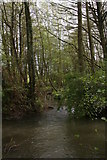 TF4077 : Wetlands by the footpath from Belleau Bridge to South Thoresby by Chris