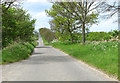 TG4103 : To Freethorpe Road on Hall Road, Reedham by Evelyn Simak