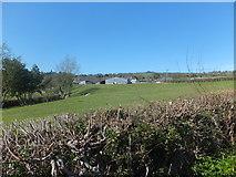 SJ2734 : Unnamed farm near Wern Mill by John Haynes