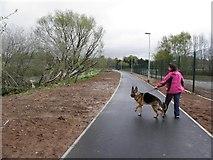 H4473 : Walking the dog, Strathroy by Kenneth  Allen