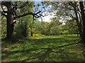 TQ3870 : Beckenham Place Park by Derek Harper