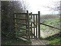 ST7168 : A deer fence near Prospect Stile by Ian S