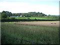 SP1163 : Corner of a wheatfield near High Fields Farm by Robin Stott