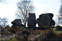 SE2065 : Rock formations at Brimham Rocks by Bill Boaden
