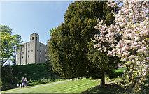 TL7835 : Castle Hedingham, Colne Valley, Essex by Christine Matthews