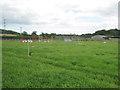 SP1063 : Equestrian paraphernalia near Netherstead by Robin Stott