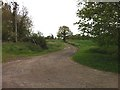 SU6561 : Old road to Silchester Crossing by Hugh Craddock
