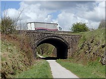 SK1555 : A515 bridge over the Tissington Trail by Andrew Hill