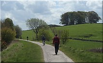 SK1555 : On the Tissington Trail by Andrew Hill