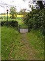 TM3687 : Church Path of St.John's Church by Geographer