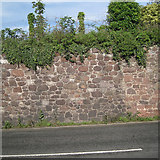 SX9473 : Sandstone boundary wall, Dawlish Road, Teignmouth by Robin Stott