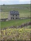 SK1462 : Farmhouse near the Tissington Trail by Andrew Hill