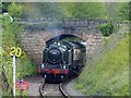 ST0743 : Steam hauled train arriving at Watchet by Robin Drayton