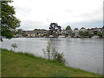 TQ1667 : Moorings at Thames Ditton by Paul Gillett