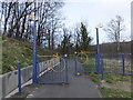 NS3977 : National Cycle Network gates by Barbara Carr