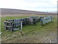 HP5905 : Livestock pens above the Loch of Watlee by Oliver Dixon