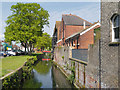TR1458 : River Great Stour, Canterbury Westgate by David Dixon