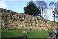 TQ5846 : Tonbridge Castle Walls by N Chadwick
