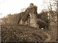 SN0713 : Remains of Castell Coch in Canaston Wood by Gareth James