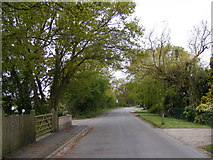 TM4087 : School Road, Ringsfield Corner by Adrian Cable