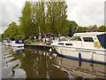TQ7557 : Allington Marina, River Medway by David Dixon