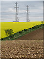 TA0019 : Electricity Pylons by David Wright