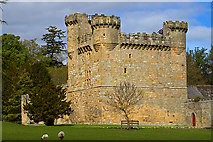 NZ0878 : Belsay Castle by Mike Searle
