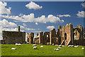 NU1241 : Lindisfarne Priory (3) by Mike Searle