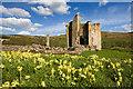 NU1109 : Edlingham Castle by Mike Searle