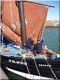 NT6779 : Coastal East Lothian : PULL! by Richard West