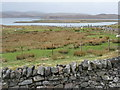 NB2132 : Looking west from Calanais by M J Richardson