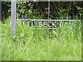 TM2897 : Littlebeck Lane sign by Adrian Cable