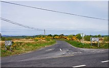 M7102 : The L4205 road to Moyglass, near Woodford, Co. Galway by P L Chadwick
